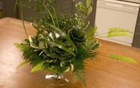 How to create an all foliage arrangement. How to Create a rose out of Galax leaves