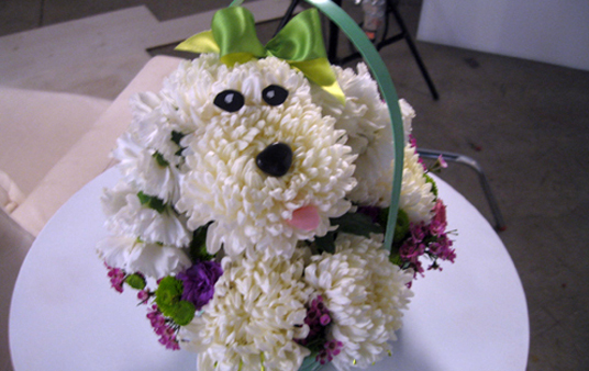 How to make a Poodle Mum Arrangement!