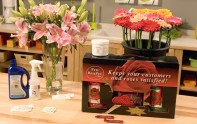 How to use Flower Nutrients for LONGER Lasting Roses, Lilies and Gerbera Daisies!