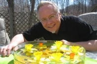How to Create a Floating Daffodil Centerpiece!