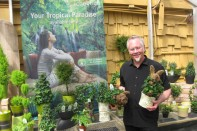 How to Display and Merchadise your Topiary Trees and Pottery!