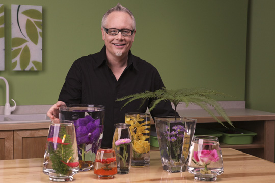How to create Submerged Flower Arrangements!