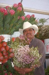 Mel Resediz holding waxflowers