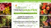 uBloom Trend Analysis