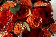 Creating a Special Event Centerpiece with Roses, Orchids and Butterflies