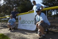 uBloom Sponsors Chad Nelson's Sons Little League Team... It's about Supporting our Neighbors!