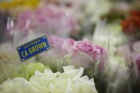 The CA Grown Experience on uBloom_ASK for CA Grown Flowers