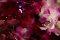 How to Create an Orchid Centerpiece with Dendrobium Orchids and Orchid Garlands