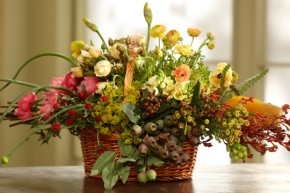 There are MANY wonderful attributes that make flowers so attractive to ...