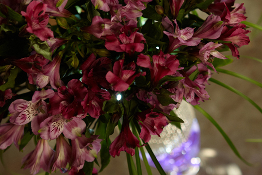 Creating an Event Centerpiece- Starring Symphony® Alstroemeria
