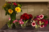 How to Care for your Flowers & Easy Flower Arrangements