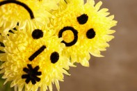 How to Create Emoticon Mums