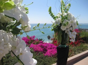 Flower Design by McKenna Floral