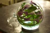 How to make a Calla Lily Bubble Bowl Arrangement