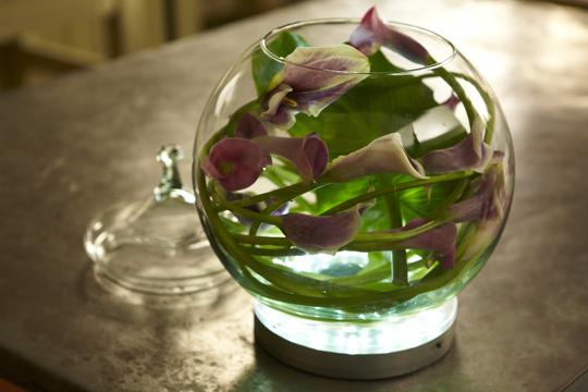 How To Arrange Flowers Calla Lily Bubble Bowl Arrangement Ubloom