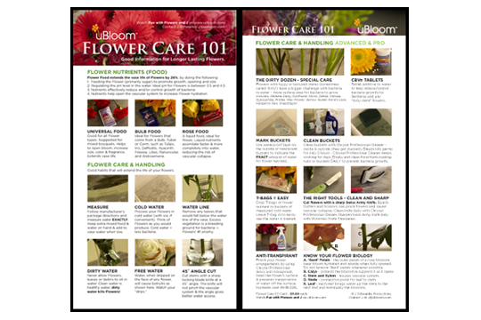 Flower Care 101 Card