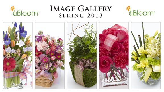 A sample of the uBloom Spring 2013 Image Gallery!