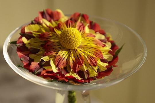 How to Create a Composite Flower using Symphony Alstromeria