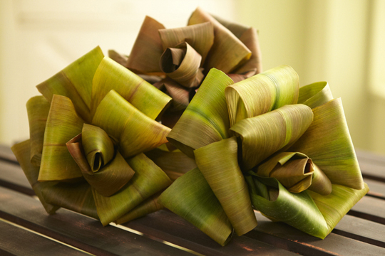 How to Create a Rose out of Aspidistra Leaves