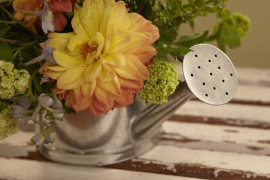 How to Arrange Flowers- Making an Arrangement in Flower Foam