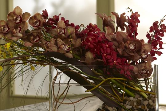 How to Arrange Flowers- Orchid Arrangements