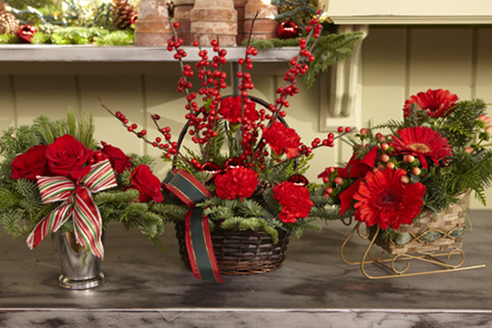 How to arrange flowers- Pre-Greened Christmas Arrangements