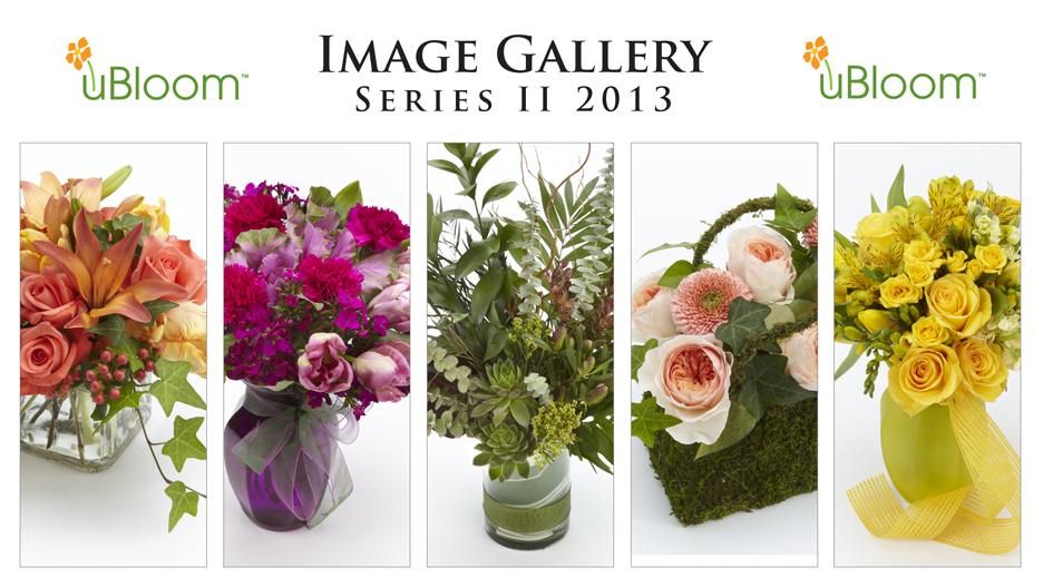 Sample-IG-Series2-2013-SMALL