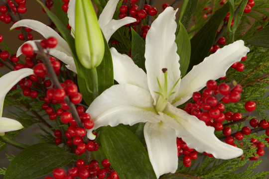 How to arrange flowers- CA Grown Ilex Berry Arrangements