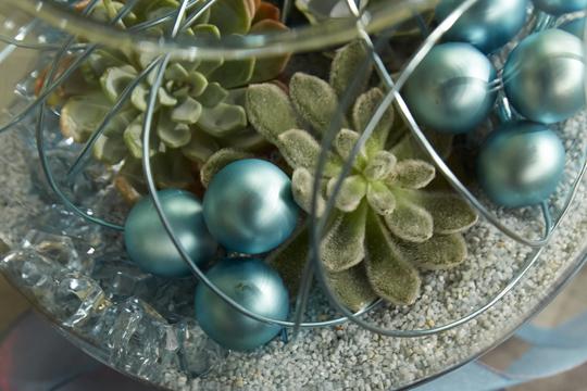 How to arrange flowers- Christmas Terrarium with Succulents