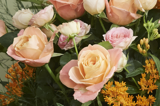 How to arrange flowers- Peach Roses in Ombre' Vase