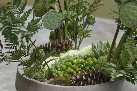 How to arrange flowers- Fern Discovery Arrangement