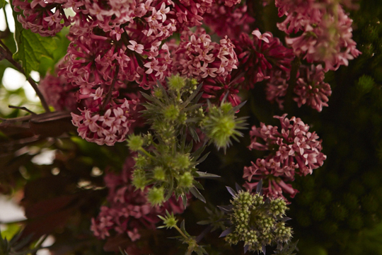 How to arrange flowers- The MEADOW Trend Concept