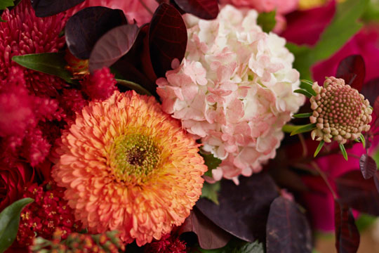 How-to-arrange-flowers--Color-Shift-for-Flowers