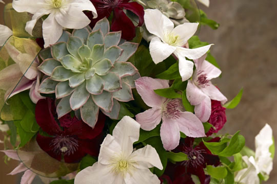 How to arrange flowers_Cascade Wedding Bouquet featuring Clematis and Succulents