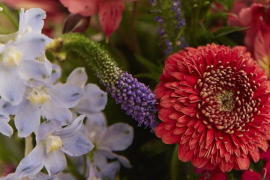 How to arrange flowers_Time Savers & Fast Easy Professional Vase Arrangements