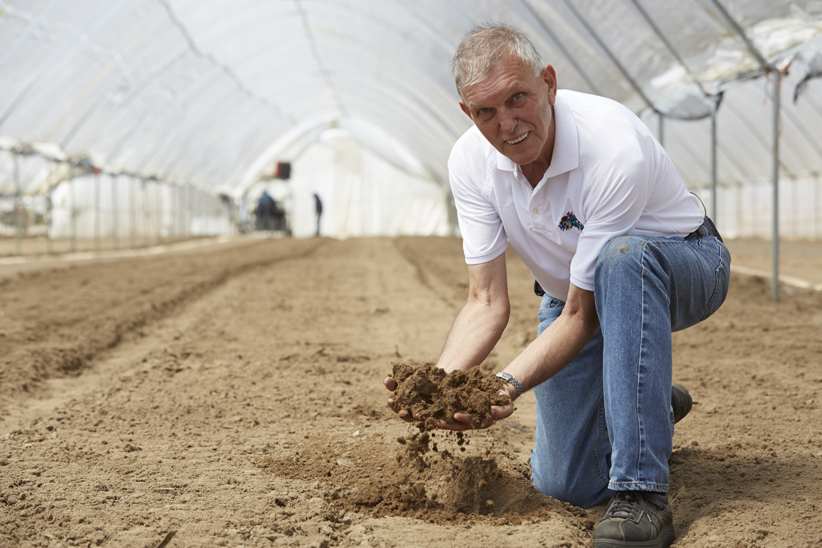 Dutch Roots in America Soil... Benno Dobbe and the perfect soil for growing Dutch Bulbs!