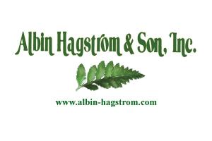 Albin Hagstrom & Sons