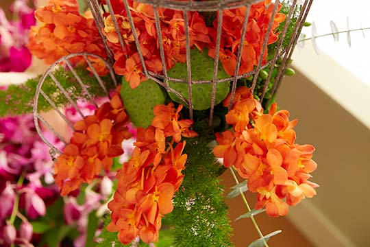 How to Arrange Flowers_Orchid Tree
