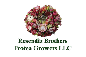 Resendiz Brothers
