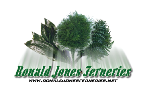 Ronald Jones Ferneries