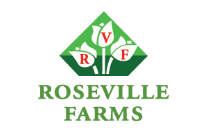 Roseville Farms - Clematis
