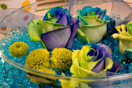 How to Arrange Flowers_Revisiting Rainbow Roses from 2007