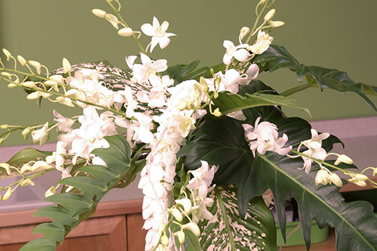 How to Arrange Flowers_Amy's Orchids Garlands
