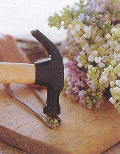 Bad Behavior = Flowers + Hammers