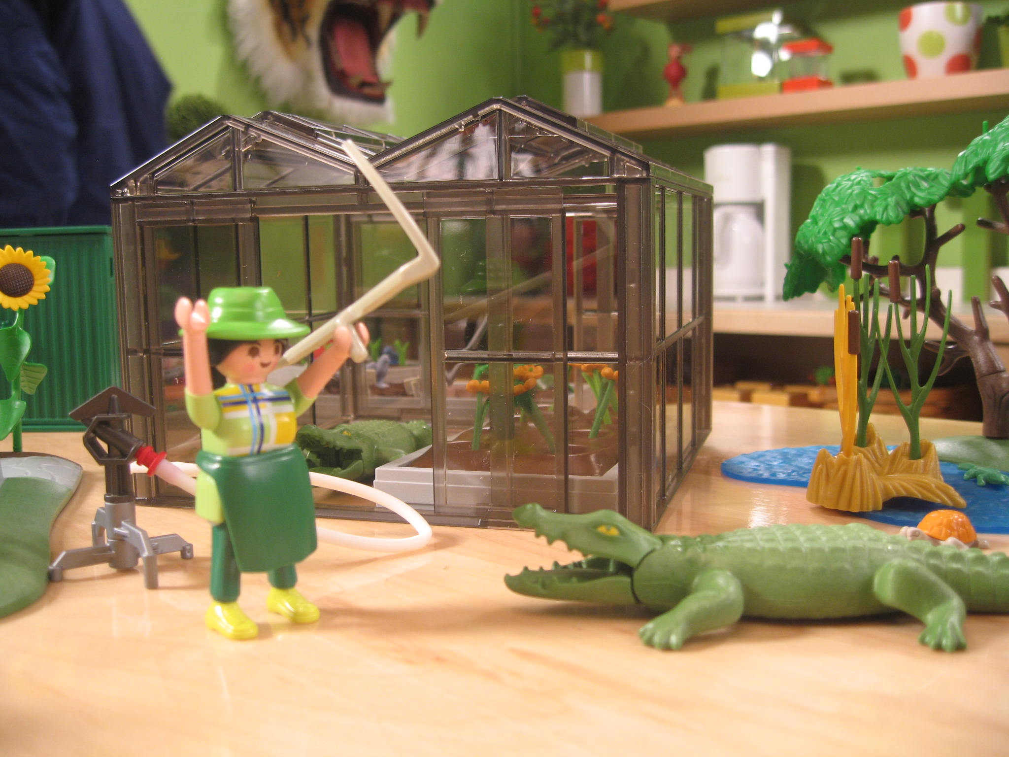 My Grandpa used to keep alligators in the greenhouse when I was a kid!