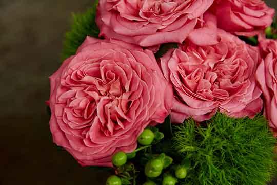 Everyday Garden Rose Arrangements