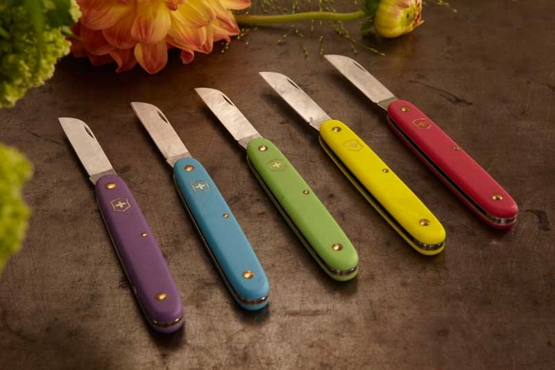 Choose your knife color!