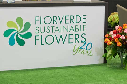 The Flowers Of Colombia- FlorVerde- Supporting Sustainability with Flowers