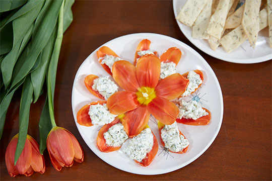 Herb infused Goat Cheese
