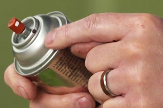 Foliage Paint Practices to Insure Success!